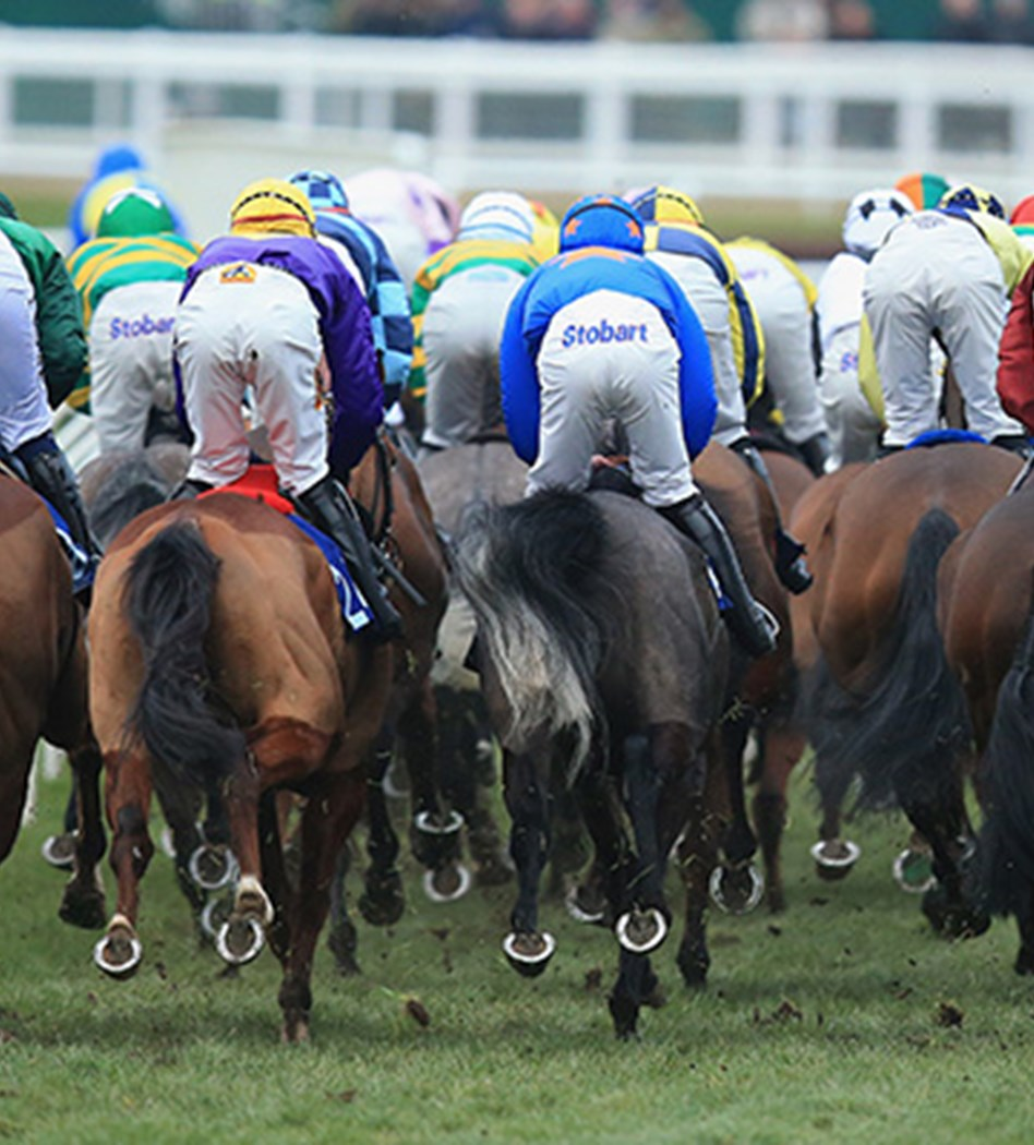 Horse race spread betting explained bbc report on tennis betting trends