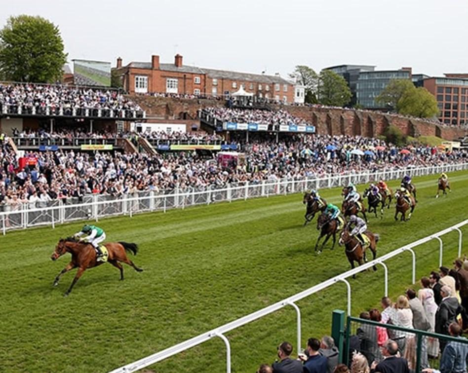 Horse race spread betting explained irish greyhound derby 2021 betting