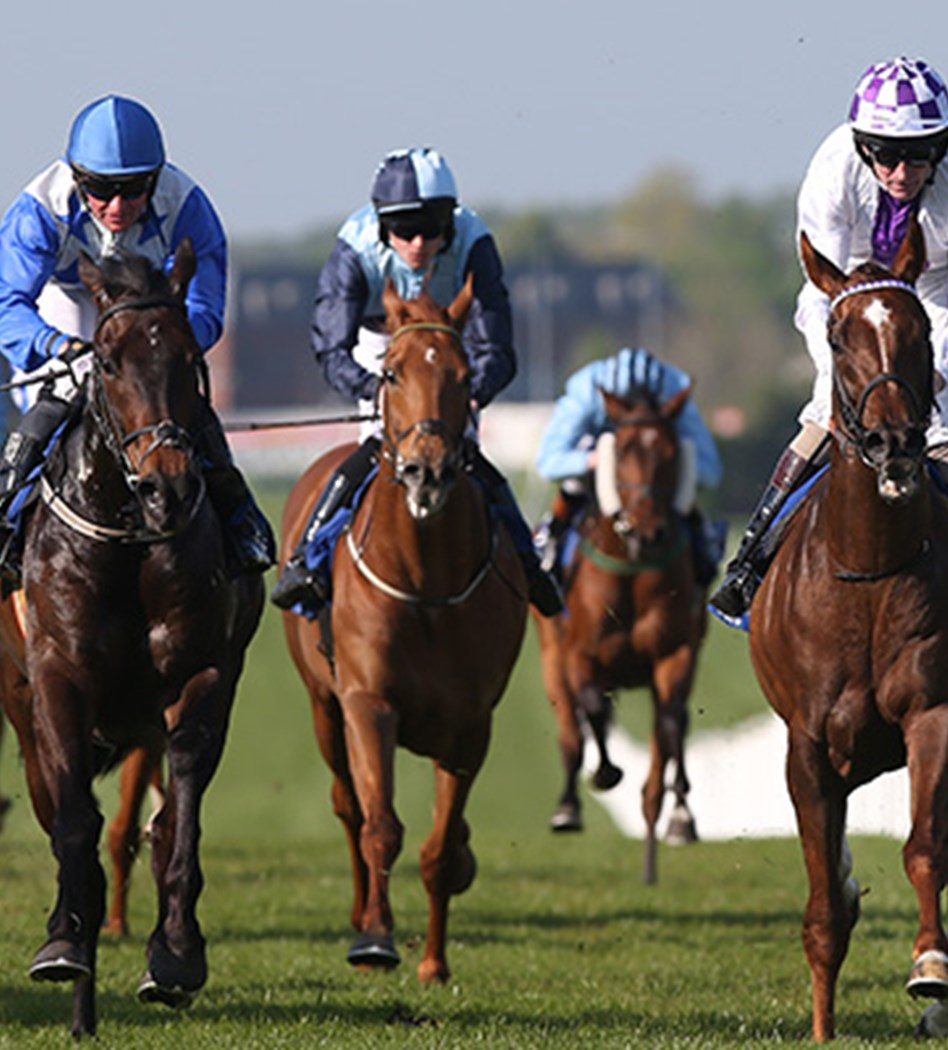 Spread betting ftse strategy horse greatwood hurdle betting odds